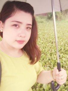 Trinhcandy