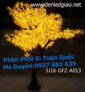 Trần Thị Ánh Duyên
