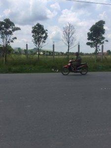 Phan Nhật Lệ