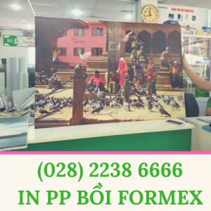Giá In PP Bồi Formex