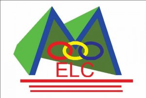 Điện Trường Elc