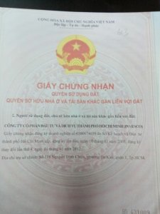 Trương Thảo Nghi