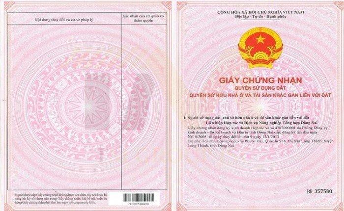 Nguyễn Duy Tân