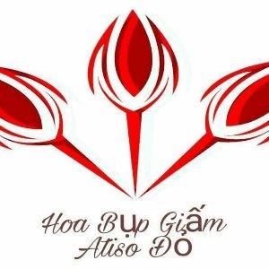 Hoa Bụp Giấm - Atiso Đỏ