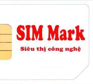 Mr Sơn Simmartthegioisim