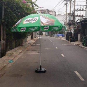 Nguyễn Thị Thảo Loan