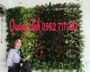 Nhà Phân Phối Phụ Kiện Vườn Đứng Quang Anh
