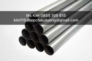Ms Kim Steel