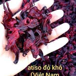 Trần Thị Hoài Quyên
