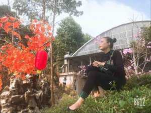Hình đại diện Mai Trang
