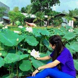 Minh Liên Khánh Võ