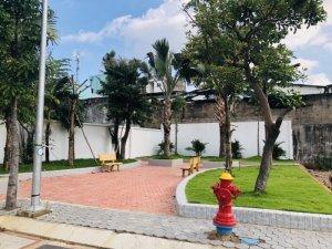 Đặng Nam Giang