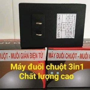 Trần Thanh