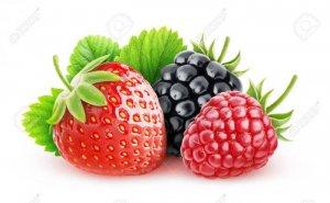 Berry Foods