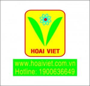 Hoài Việt