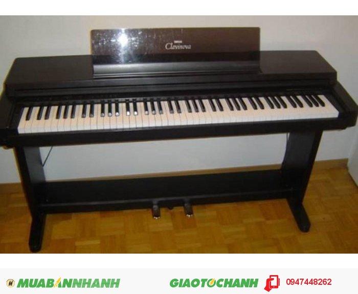 Đàn Piano Điện Giá Rẻ2