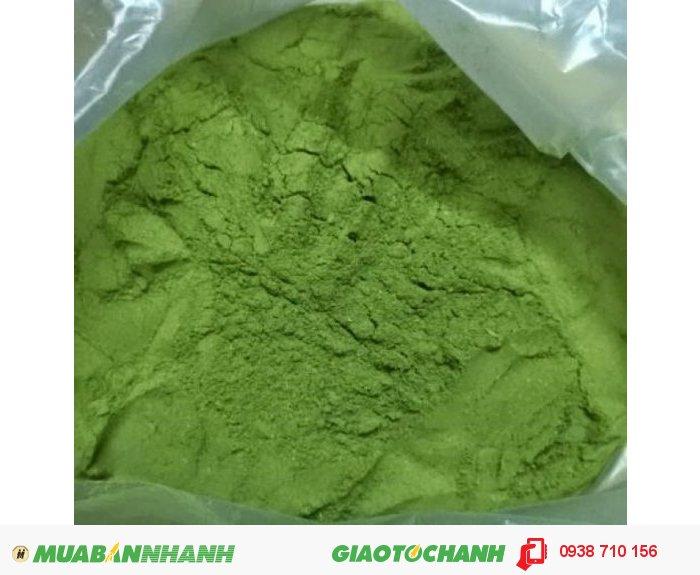 Dùng công nghệ sấy lạnh, bột trà xanh vẫn giữ nguyên màu sắc2