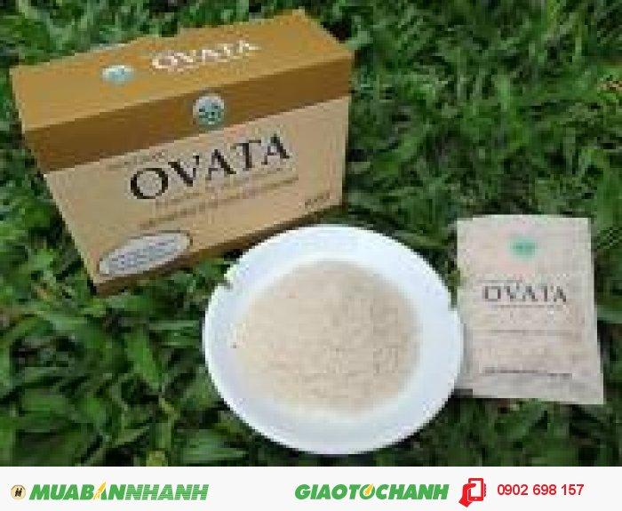 Cần tìm đại lý phân phối thảo dược Ovata trị nhanh táo bón, trĩ
