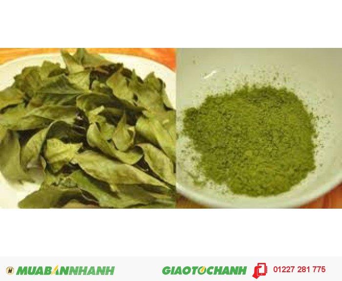 Bột trà xanh: GIÁ LẺ: 75K/100GR GIÁ SỈ : 1kg - 450k  3-4kg gia 380k/kg 5kg -  giá 350k/kg  -  10kg 300k/kg3