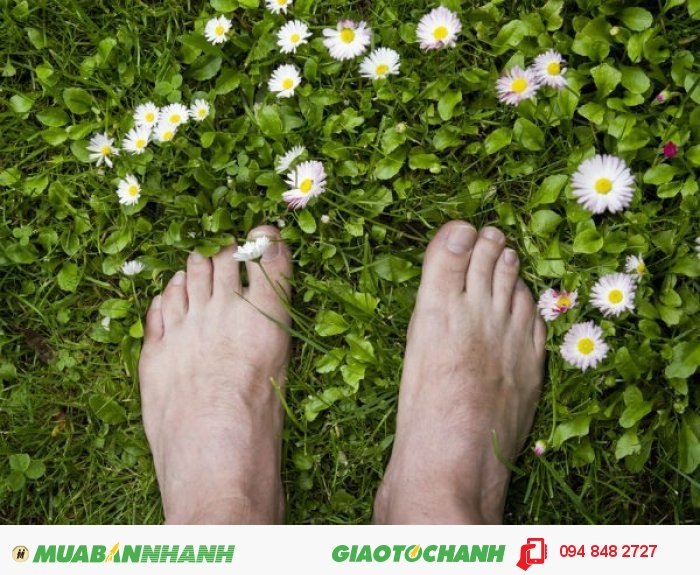 Với mùi hương thảo mộc dễ chịu, cho bạn cảm giác thoải mái thư giãn, nâng niu bàn chân, bờ vai,.. của bạn., 3