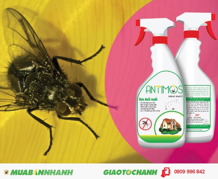 Sơn trong đuổi ruồi Antimos | Quy cách: 600ml | Giá: 200.000đ | Mô tả: Ruồi và các côn trùng gây hại vốn là một hiểm họa khôn lường đối với sự phát triển kinh tế xã hội, vệ sinh môi trường và sức khỏe con người. Chính vì vậy, với sự kết hợp hài hòa giữa tinh dầu cây cỏ thiên nhiên, hoạt chất đuổi muỗi và nhựa Acrylic Elmusion, sơn đuổi muỗi Antimos sẽ chống muỗi bằng cách tác dụng trực tiếp đến côn trùng và các hợp chất trong sơn sẽ khiến muỗi khó chịu và bỏ đi., 5