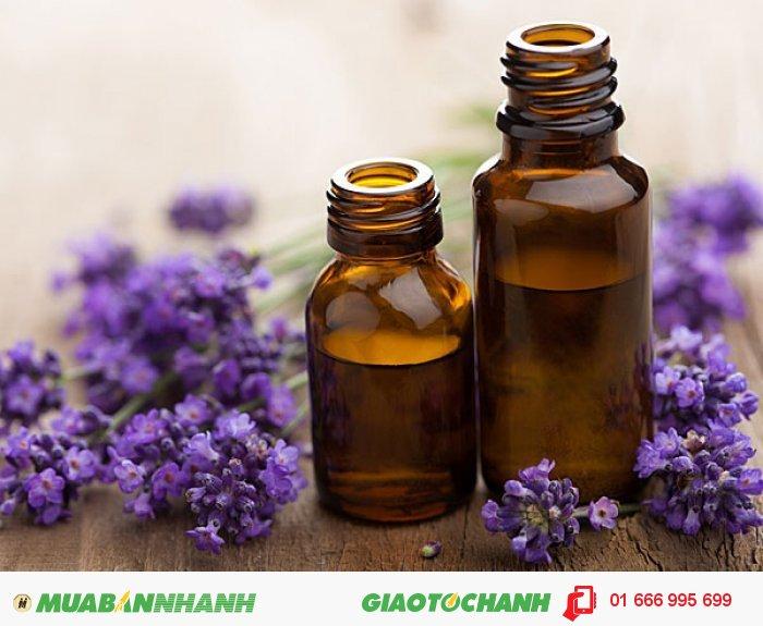 Ngoài ra tinh dầu hoa oải hương có tính sát trùng rất mạnh; khi mát-xa cho da có thể giúp điều trị một số vấn đề về da như mụn, bỏng, da khô, chàm và mẫn ngứa., 2