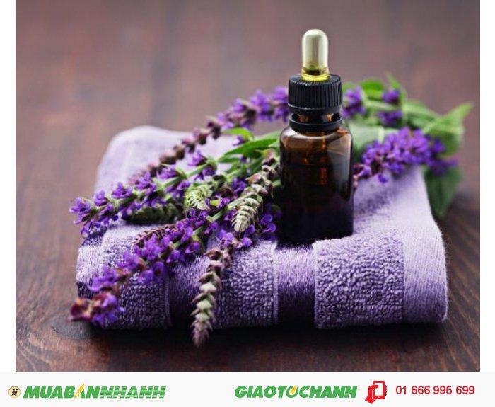 Đặc biệt, tinh dầu oải hưởng rất tuyệt vời để xoa dịu cơ bắp và tạo môi trường để ngủ ngon, giúp giải cảm và ho. , 3