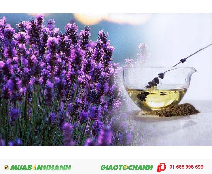 Mùi hương tinh tế thể hiện sự lịch sự, tao nhã và điềm tĩnh giúp giảm căng thẳng, tái tạo năng lượng và dễ ngủ., 4