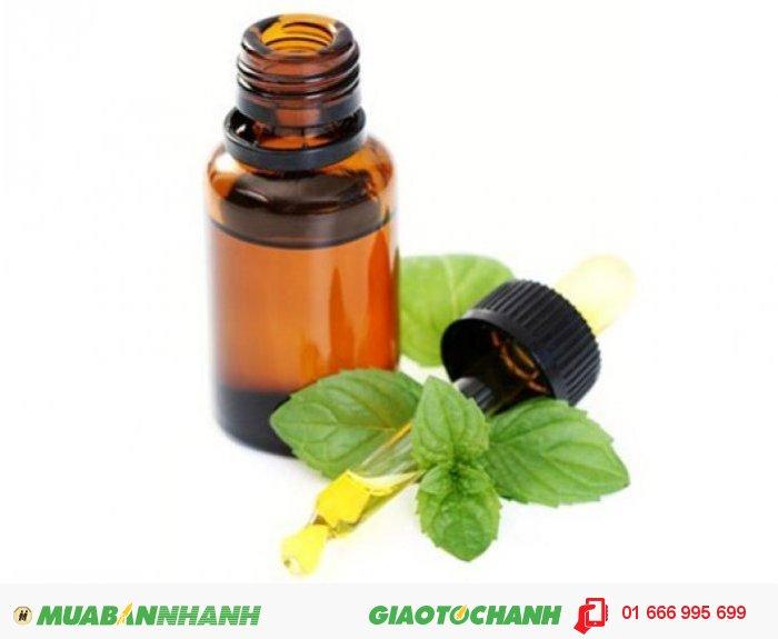 Các tinh dầu với mùi hương bạc hà rất thích hợp sử dụng trong phòng học, phòng tắm, xe hơi. Hãy gọi điện ngay cho chúng tôi để được tư vấn., 5