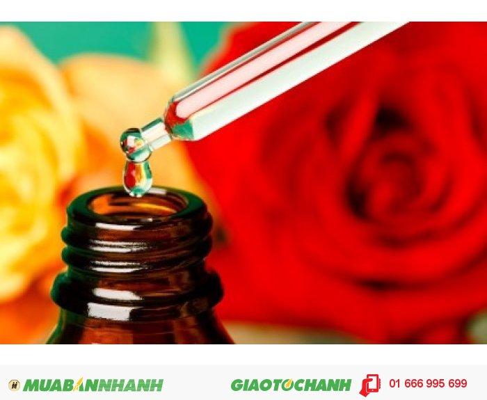 Tinh dầu hoa hồng cũng có tác dụng trị mụn, vết nhăn, chàm,giúp se lỗ chân lông. Giảm nhiễm khuẩn,sưng tấy và loét. , 3