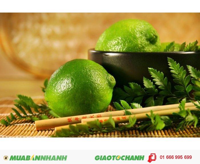 Mùi hương sảng khoái và mát mẻ giúp giảm căng thẳng, tốt cho người cao huyết áp, thiếu máu, hen suyễn, phế quản., 2