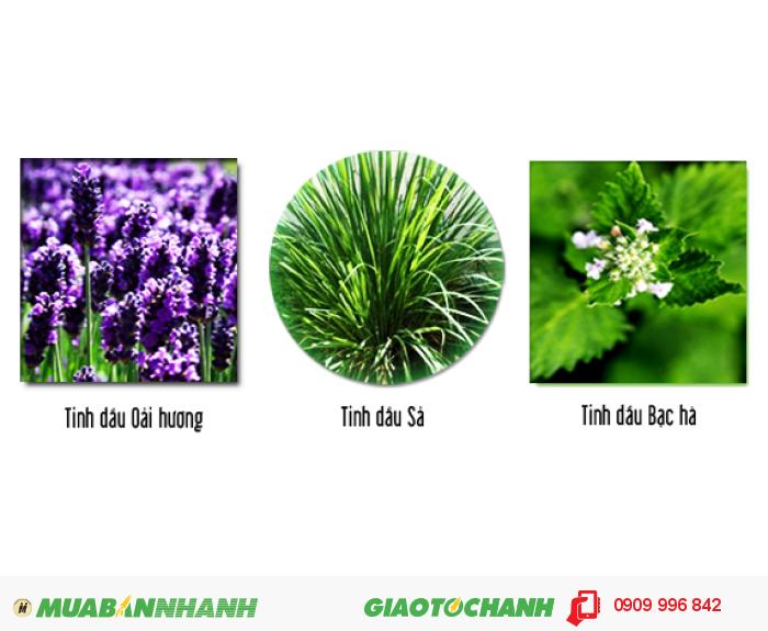 Sơn đuổi muỗi Antimos là sự kết tinh hài hòa giữa tinh dầu cây cỏ thiên nhiên, hoạt chất đuổi muỗi và nhựa Acrylic Elmusion tạo thành sản phẩm sơn đuổi muỗi vô cùng hiệu quả và an toàn., 1