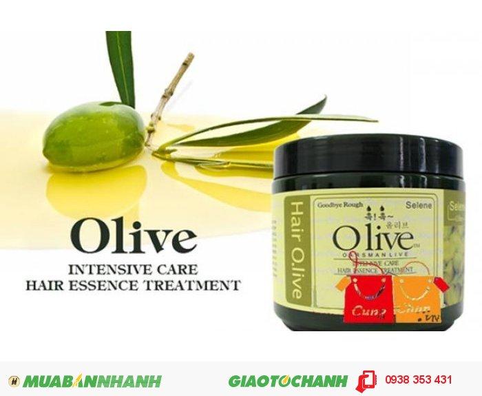 Dầu Hấp Ủ Tóc Olive Hàn Quốc0