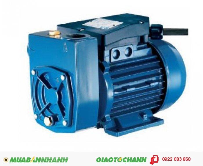 Máy bơm nước không cần mồi Pentax MD65Giá: 8.120.000Hãng sản xuất: PENTAXCông suất (W): 1170Nguồn điện: 230V – 50HzTrọng lượng (kg): 11.6Xuất xứ: Italy, 1