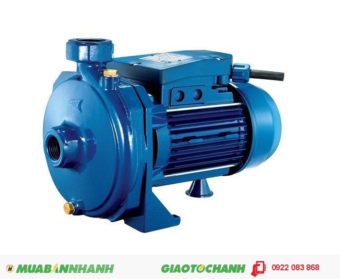 Máy bơm nước ly tâm Pentax CM 50: Là dòng máy bơm ly tâm, có thể sử dụng trong bơm hút giếng đào, giếng khoan cho phép mặt nước tĩnh sâu 10 - 16m (H) khi được lắp với củ hỗ trợ hút sâu (sáo giếng).Giá: 7.620.000Nhà sản xuất : Made in ItalyKích cỡ : 30 x 18 cm, 1