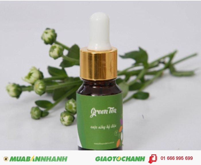 Tinh dầu Green Tea (Trà Xanh) | Mã sản phẩm: TD21010C | Giá bán: 235.000 | Dung tích: 10ml | Mô tả: Tinh đâu giúp trị mụn, điều hòa da, tạo cảm giác thư thái, chống khuẩn, chống viêm. Pha tinh dầu nguyên chất cây trà và tinh dầu nguyên chất oải hương giúp giảm mụn, chống nhiễm trùng và giảm những vết đen trên da mặt, giúp da mặt sáng và sạch hơn. , 5