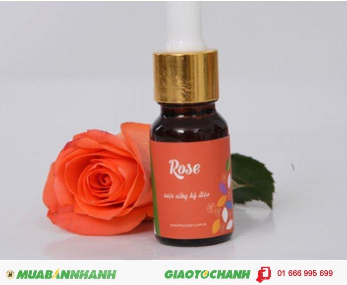 Tinh dầu Rose (Hoa Hồng)| Mã sản phẩm: TD11010C | Giá bán: 295.000 | Dung tích: 10ml | Mô tả: Tinh dầu hoa hồng là loại tinh dầu bậc nhất có tác dụng xóa bỏ mệt mỏi, đem lại giấc ngủ ngon cũng như giải tỏa đau buồn, trị trầm uất và loạn thần kinh. , 3