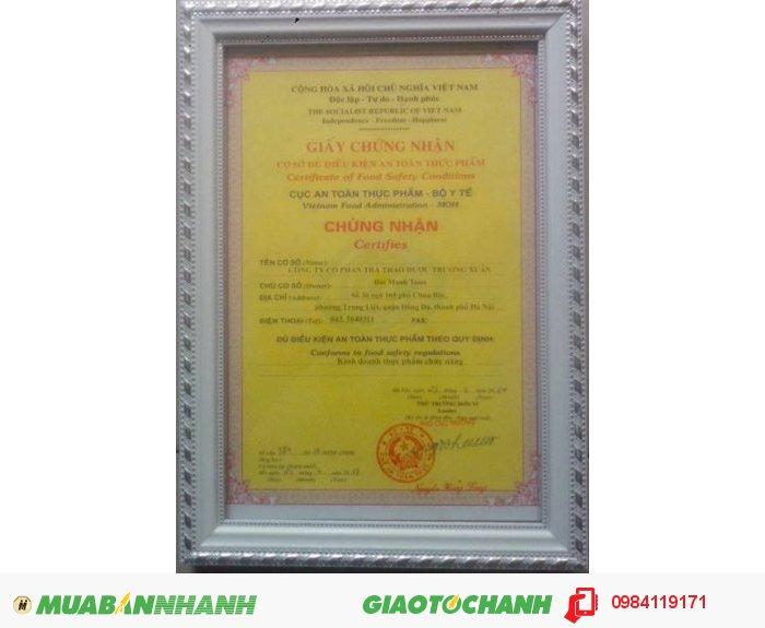 Trà xanh Tân Cương Thái Nguyên chất lượng hảo hạng - nguyên chất 100%2