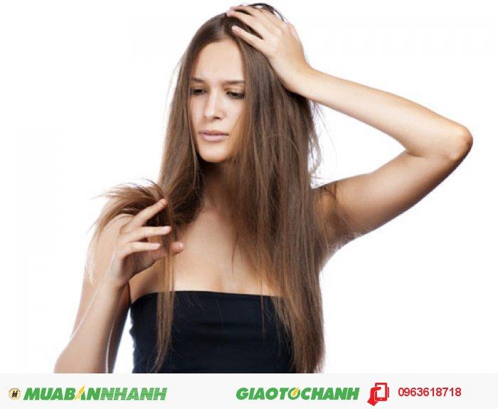 Sản phẩm thích hợp nhất cho những người bị hói đầu lâu năm, những người muốn kích thích tóc mọc nhanh, những người rụng tóc nặng, những người muốn bảo vệ tóc chắc khỏe hơn., 2