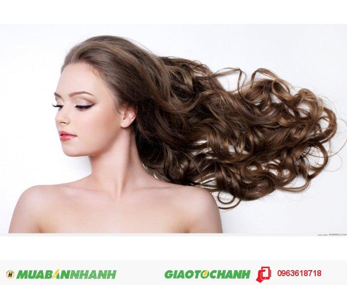 Công dụng: bổ sung các chất dinh dưỡng tự nhiên giúp giảm rụng tóc và thúc đẩy tăng trưởng giúp mọc tóc nhanh chóng., 3