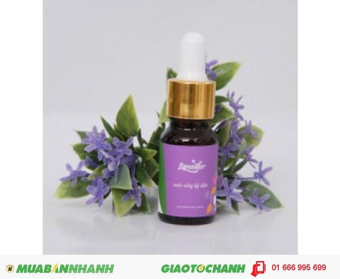 Tinh dầu Lavender (Oải Hương)| Mã sản phẩm: TD06010C | Giá bán: 235.000 | Dung tích: 10ml | Mô tả: Tinh dầu hoa oải hương là loại tinh dầu đa năng nhất trong các loại tinh dầu, giúp giảm stress. Thật tuyệt vời để xoa dịu cơ bắp và tạo môi trường để ngủ ngon, giúp giải cảm và ho. Ngoài ra tinh dầu hoa oải hương có tính sát trùng rất mạnh; khi mát-xa cho da có thể giúp điều trị một số vấn đề về da như mụn, bỏng, da khô, chàm và mẫn ngứa, 5