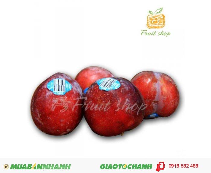 Cherry Chile 299k/kg và Mận Mỹ 149k/kg1
