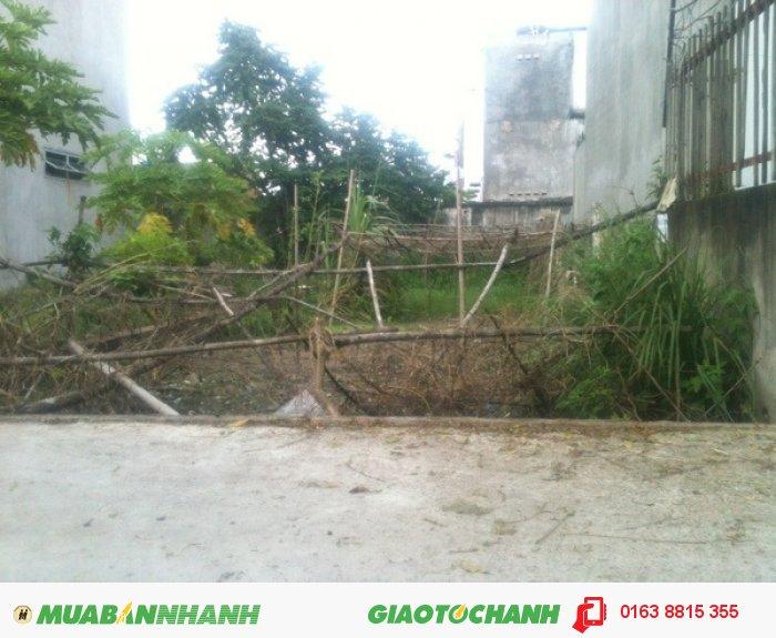 Đất Ấp Vườn Dừa Phước Tân Biên Hoà.Cách Vòng Xoay Cổng 11 700m. 250tr