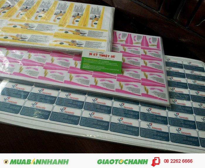 In tem decal PP nhiều màu cho khách hàng tại In Kỹ Thuật Số, 4