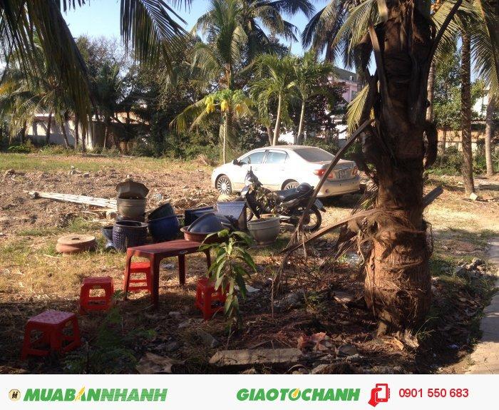 Đất ngã tư Phú Văn giá rẻ, kinh doanh ngay