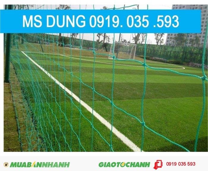 Lưới bóng đá -golf4