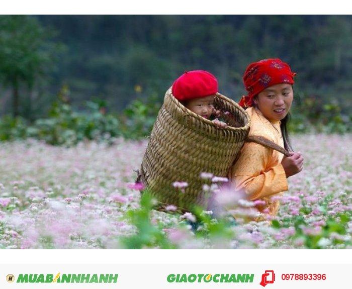 Tour Hà Giang - Đồng Văn - Cột Cờ Lũng Cú 3 Ngày 2 Đêm