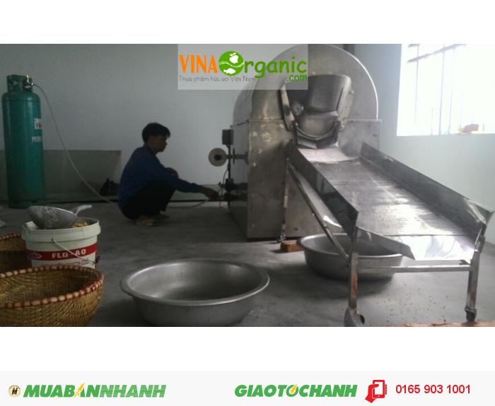 Máy rang đậu nành sấy sử dụng nhiên liệu ga- Máy rang hạt đa năng VinaOrganic