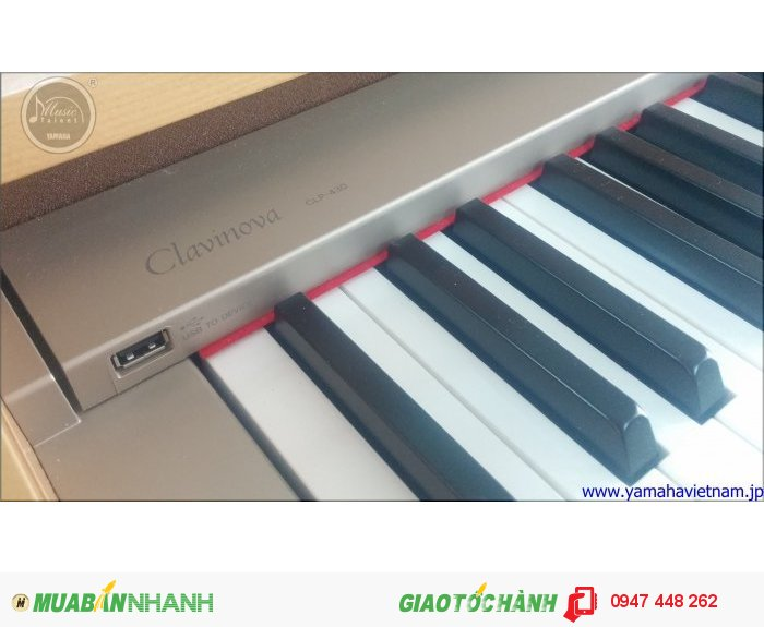 Đàn Piano Yamaha CLP 4301