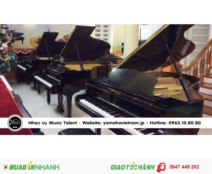 Showroom đàn Piano Grand1